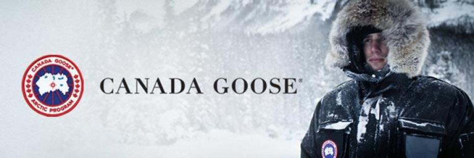 canada goose brands like