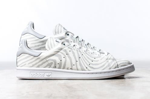 White-Gray Zebra